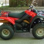 Продава АТВ Suzuki Ozark 250 (3)